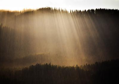 landscapetofinomearesisland20110618-IMG_7382