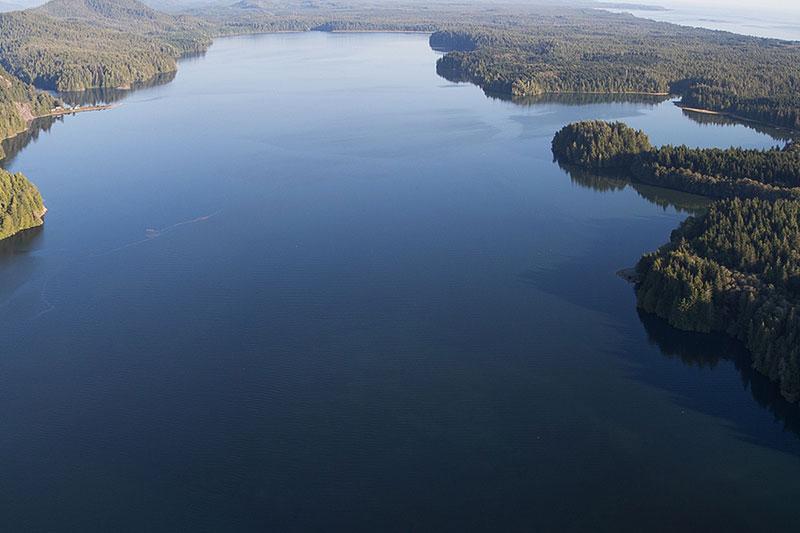 Tofino Grice Bay, Pacific Rim National Park, Tofino, BC