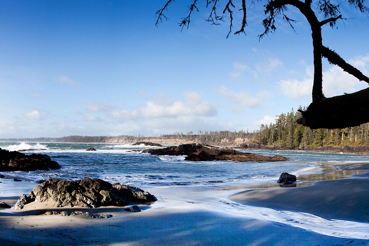 Tofino Halfmoon Bay Beach, Tofino Beaches and Trails