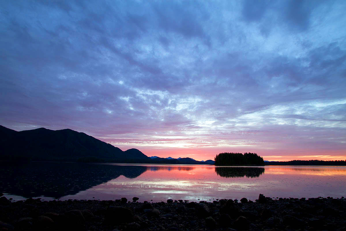 Sunrise, Tofino Mudflats, Eagles, Heron, Ducks, Otter, Wolves, Feeding Grounds, Peaceful