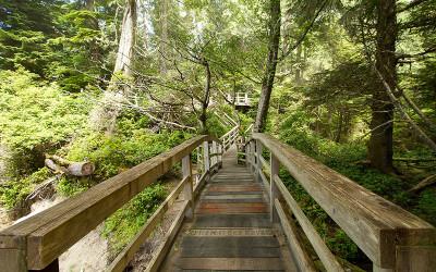 Tonquin Park Beach Stairs