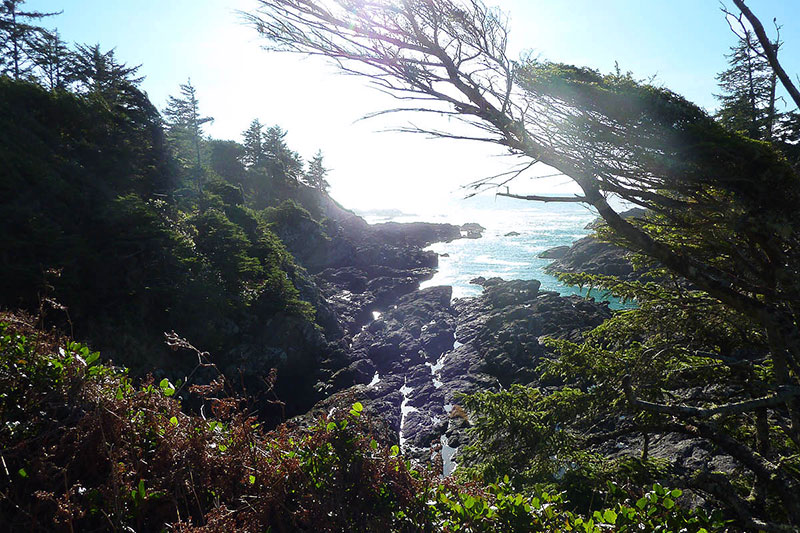 Ucluelet Wild Pacific Trail, Ucluelet, BC, Canada