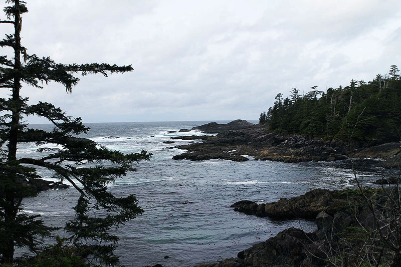 Ucluelet Wild Pacific Trail II Oyster Jim Section, Ucluelet, BC, Canada