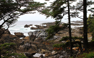 Ucluelet Wild Pacific Trail III